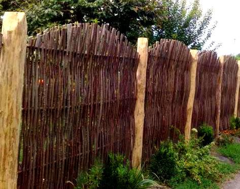 Забор из тальника своими руками