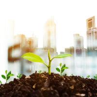 12785 Изменение требований энергоэффективности зданий