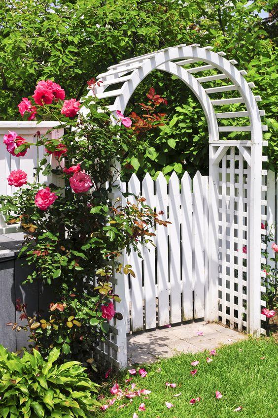 29715 Украшаем дачный участок — садовыми арками сделанными своими руками