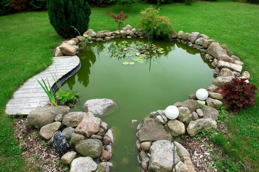 29766 Декоративный пруд на даче: руководства и секреты по возведению