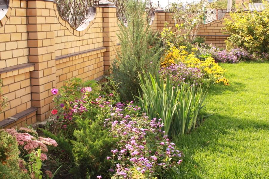 Клумба с однолетними цветами вдоль кирпичной ограды