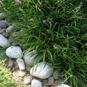 Округлые камни на садовом участке