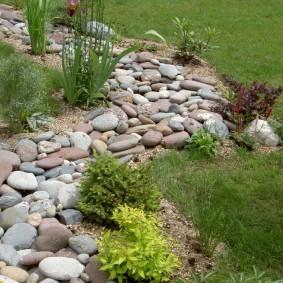 Огалтованные камни на садовом участке