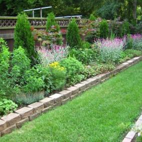 Узкая полоса газона между садовыми клумбами