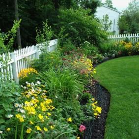 Узкий цветник с многолетними растениями