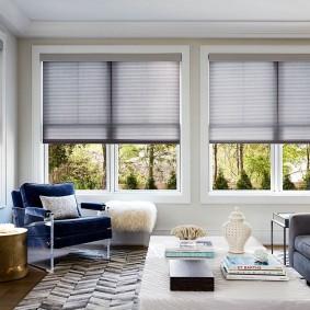 Бумажные шторы плиссе на окнах в гостиной
