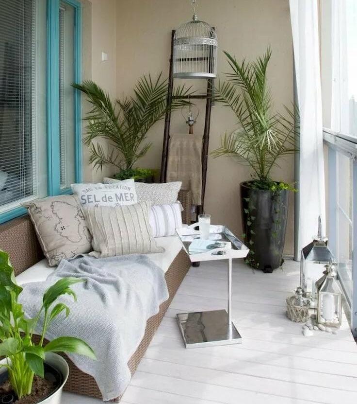 Комнатные пальмы на просторной лоджии