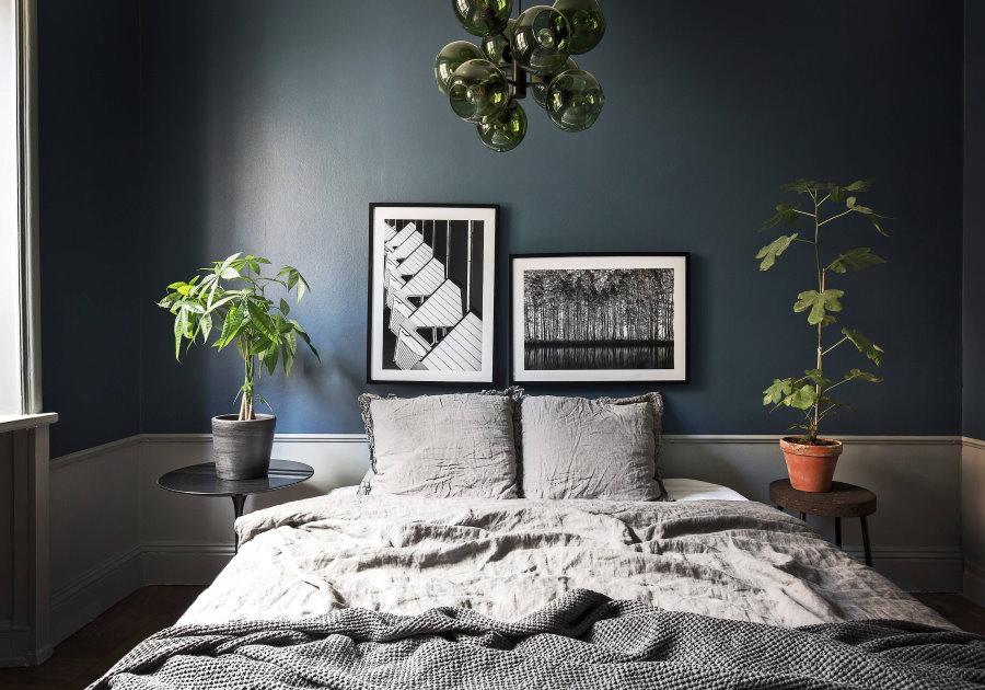 Комнатные растения в интерьере спальни для мужчины