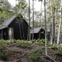 44059 Современная хижина в лесу